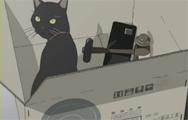고양이, 망치, 약병
